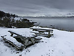 picnic benches in snow