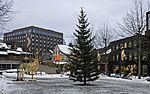 Weihnachtszeit in Tromsö