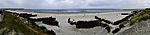 Kegelrobbenpanorama am Strand der Helgoländer Düne