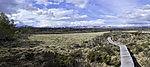 Bohlenweg im Naturschutzgebiet Fokstumyra