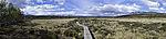 log paved path in nature reserve Fokstumyra panorama