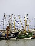 Fischkutter im Hafen von Norddeich