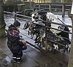 Mutter und Kind im Streichelzoo von Hagenbeck