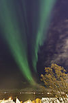 aurora over island Kvalöya