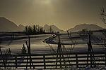 snow fence in morning light