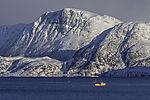 Fischerboot im Kaldfjord
