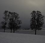winter morning near Tromso
