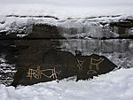 rock carvings from stoneage