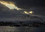 Möwe über Fischereihafen von Sommaröy