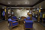 Eisbärenfell auf MS Lofoten