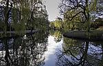 spring at pond Weiher