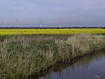 Windkraft und Bioenergie