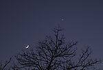 Abendstern Venus mit Mondsichel