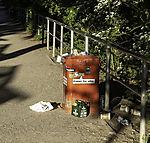 litter in park
