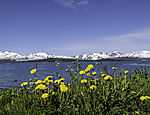 late spring in northern Norway