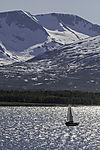 sailing boat backlit