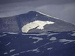 Eisbärenschneefeld am Berg