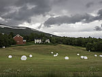 agriculture near Oppdal