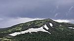 summer on Dovrefjell