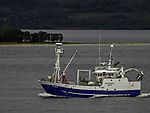 Fischerboot Fru Holmen bei Tromsö