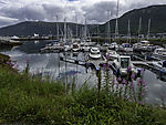 boat harbour in Tromso
