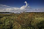 Quellwolken über Insel Bock