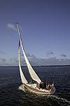 Segelboot auf Schaproder Bodden