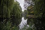 autumn at pond Am Weiher
