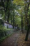 grafitti wall in Hamburg in autumn