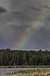 Regenbogen über Insel Bock