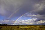 doppelter Regenbogen über Insel Bock