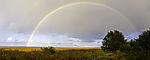 doppelter Regenbogen über Insel Bock Panorama