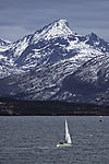 sailing in northern Norway