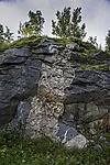 zerbrochener und verheilter Fels