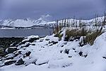 Schneemorgen in Nordnorwegen