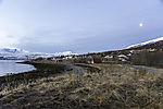 nordnorwegischer Polarmorgen