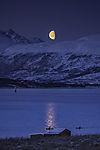 Meerespaddler im Mondschein