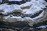 snow on stone