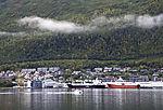fishery harbour in Tromso