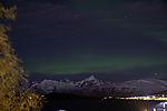 Nordlicht über Kvalöya