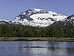 mount Tromsdalstinden in spring