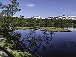 lake Prestvannet in spring