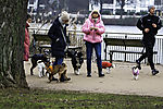 peoples and dogs at lake Alster