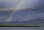 Regenbogen über Kvalöya