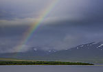 rainbow over island Kvalöya