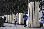 Baumschutz an der Alster