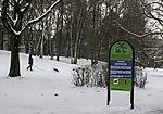 unerlaubtes Ausführen von Hunden im Park