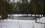 Winter am Teich Am Weiher