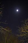 Mond über Orion