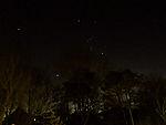 Orion am Abendhimmel